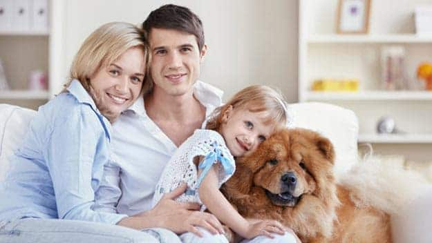 Wills & Trusts dog-young-family Direct Wills Crawley Down